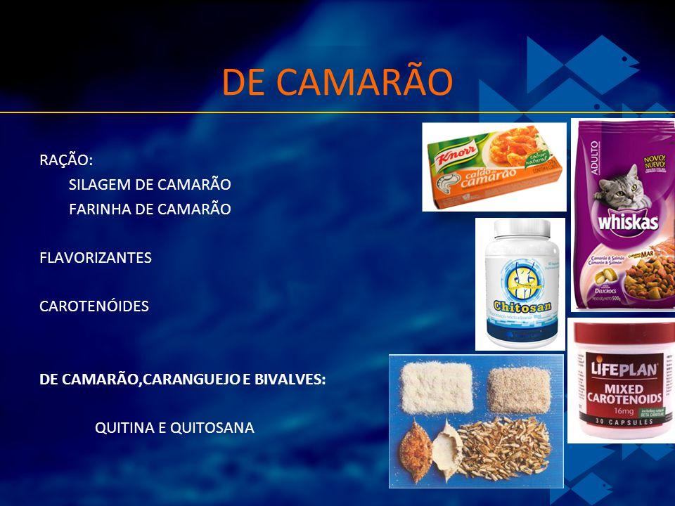 DE CAMARÃO RAÇÃO: SILAGEM DE CAMARÃO FARINHA DE CAMARÃO FLAVORIZANTES