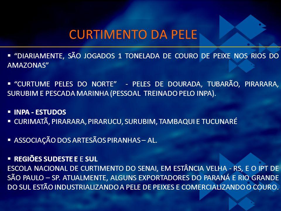 CURTIMENTO DA PELE DIARIAMENTE, SÃO JOGADOS 1 TONELADA DE COURO DE PEIXE NOS RIOS DO AMAZONAS