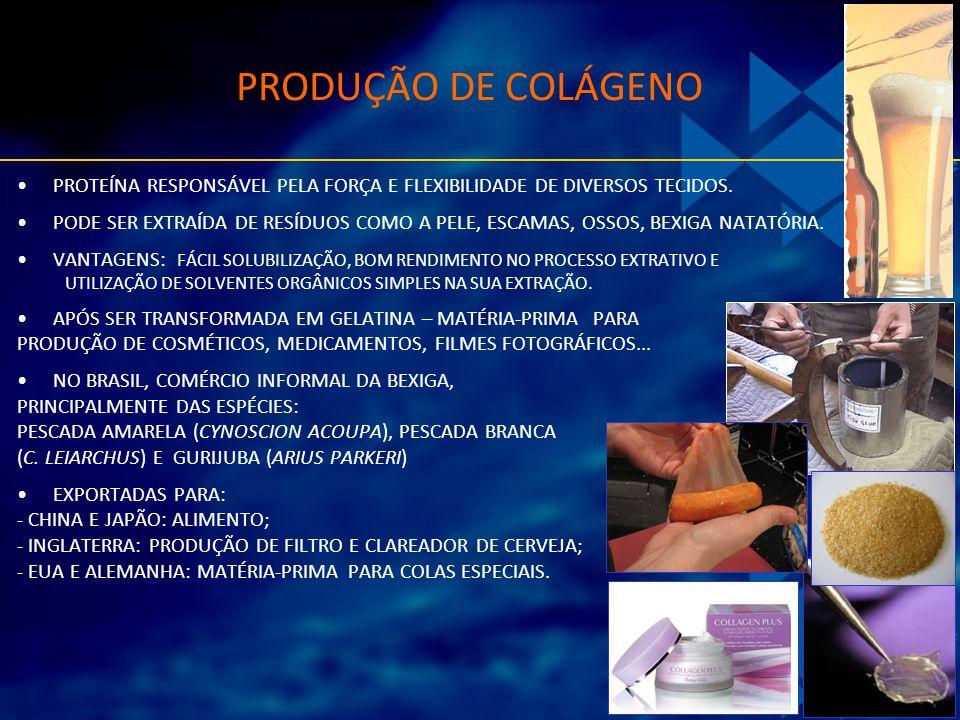 PRODUÇÃO DE COLÁGENO PROTEÍNA RESPONSÁVEL PELA FORÇA E FLEXIBILIDADE DE DIVERSOS TECIDOS.