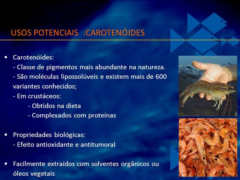 USOS POTENCIAIS :CAROTENÓIDES