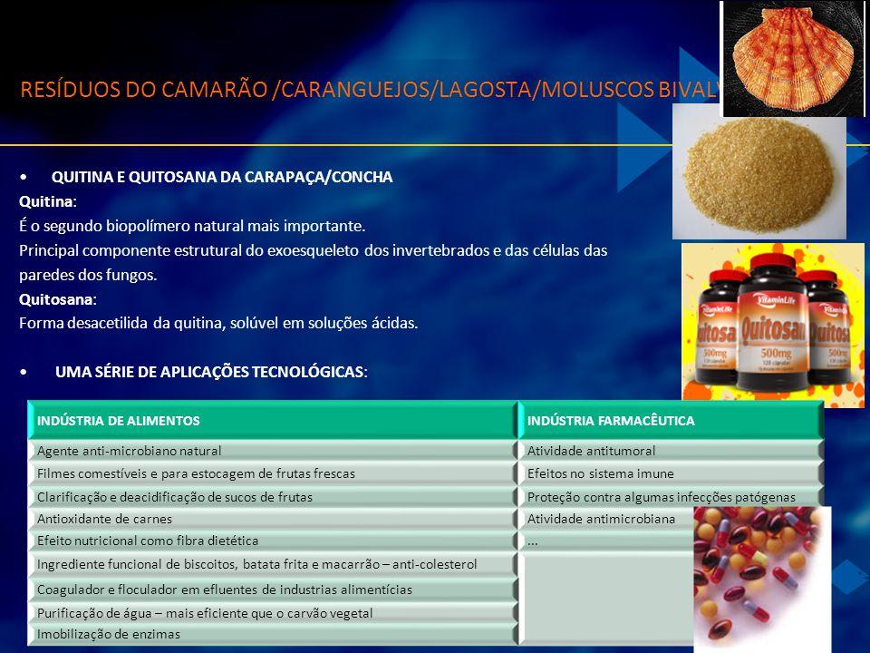 RESÍDUOS DO CAMARÃO /CARANGUEJOS/LAGOSTA/MOLUSCOS BIVALVES