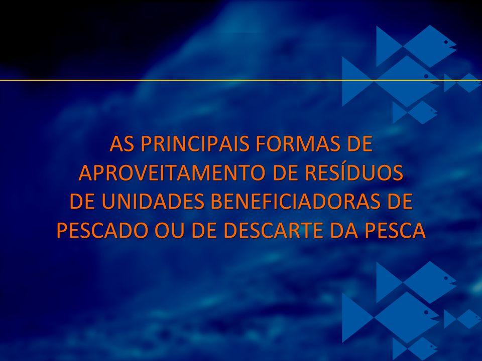 AS PRINCIPAIS FORMAS DE APROVEITAMENTO DE RESÍDUOS DE UNIDADES BENEFICIADORAS DE PESCADO OU DE DESCARTE DA PESCA