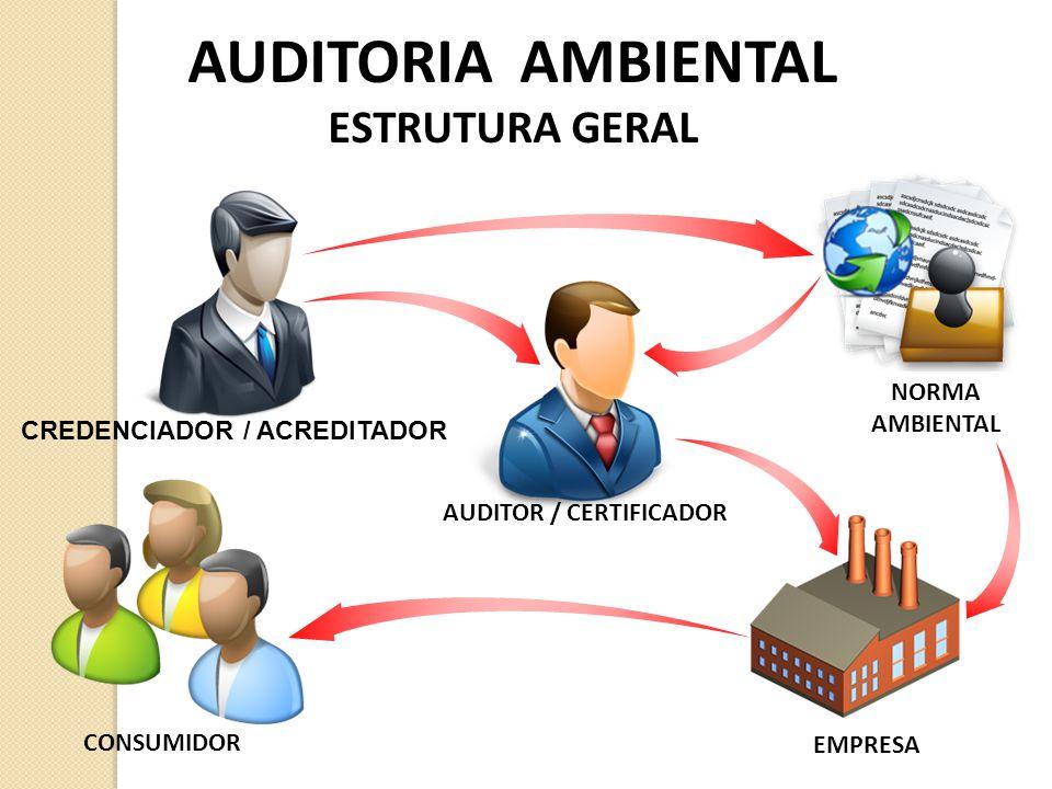 AUDITORIA AMBIENTAL ESTRUTURA GERAL