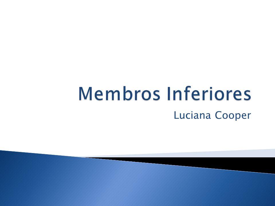 Membros Inferiores Luciana Cooper