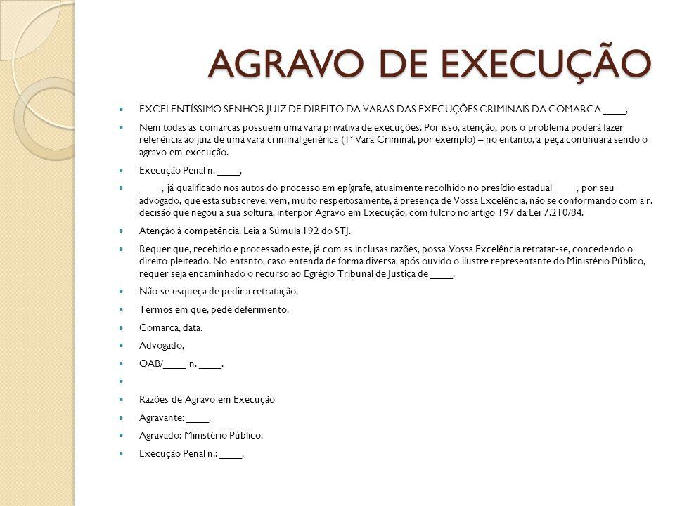 AGRAVO DE EXECUÇÃO EXCELENTÍSSIMO SENHOR JUIZ DE DIREITO DA VARAS DAS EXECUÇÕES CRIMINAIS DA COMARCA ____,