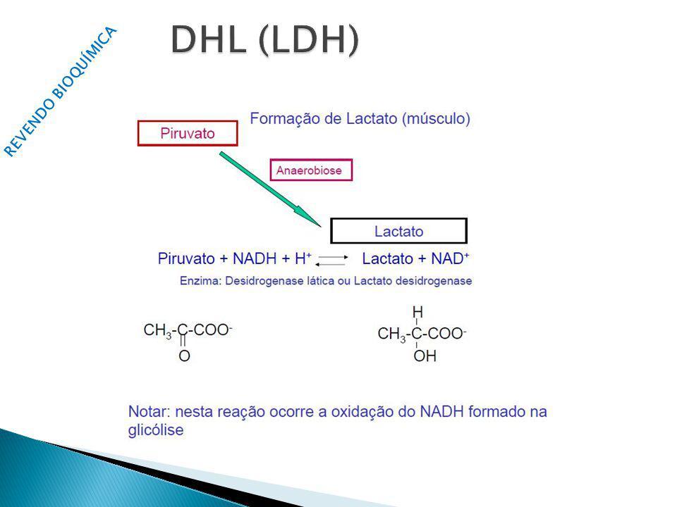DHL (LDH) REVENDO BIOQUÍMICA Nicotinamida Adenina Dinucleotídeo