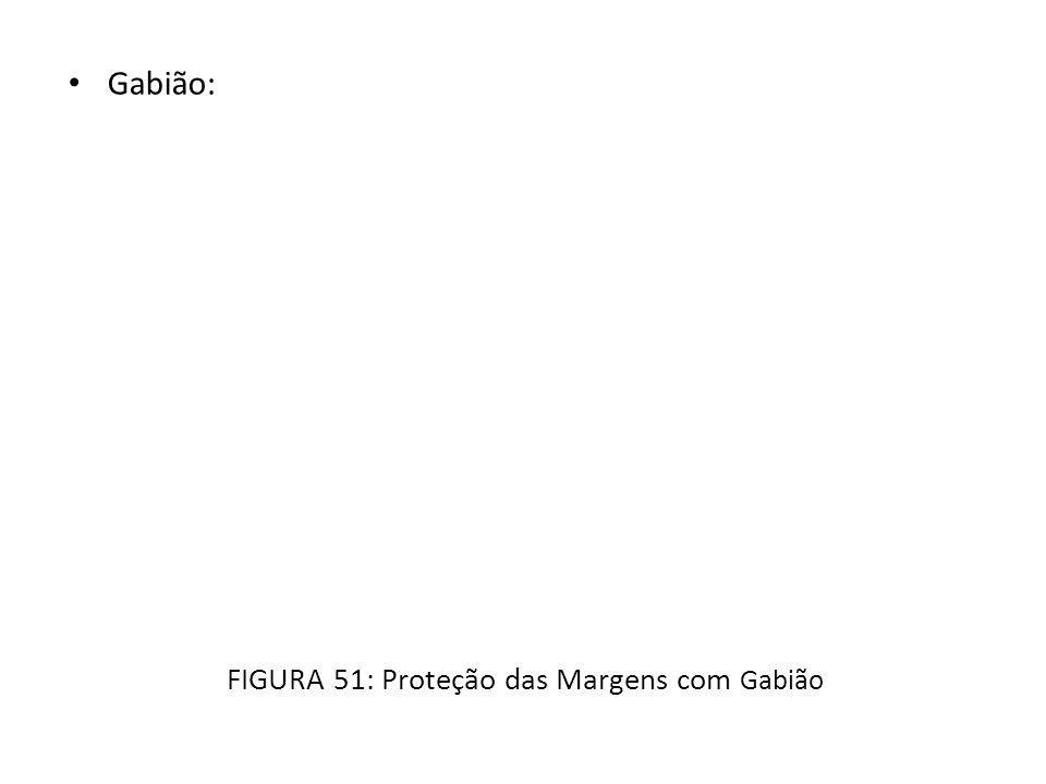 FIGURA 51: Proteção das Margens com Gabião