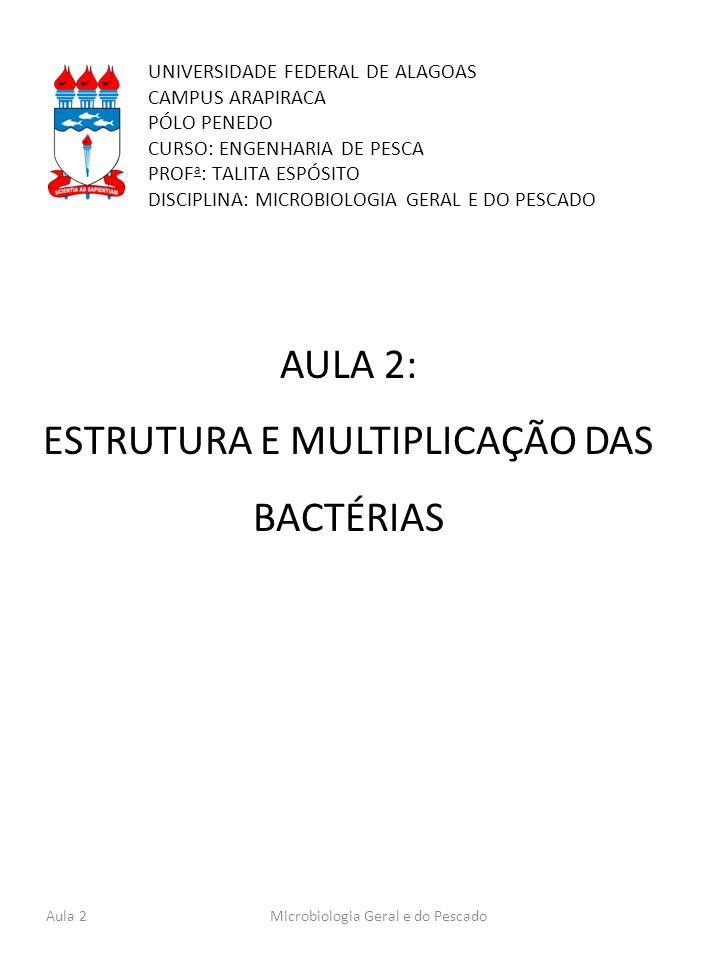 AULA 2: ESTRUTURA E MULTIPLICAÇÃO DAS BACTÉRIAS