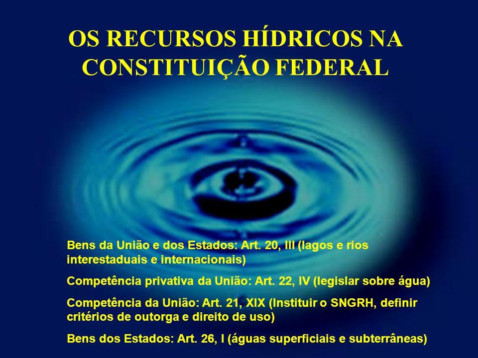 OS RECURSOS HÍDRICOS NA CONSTITUIÇÃO FEDERAL