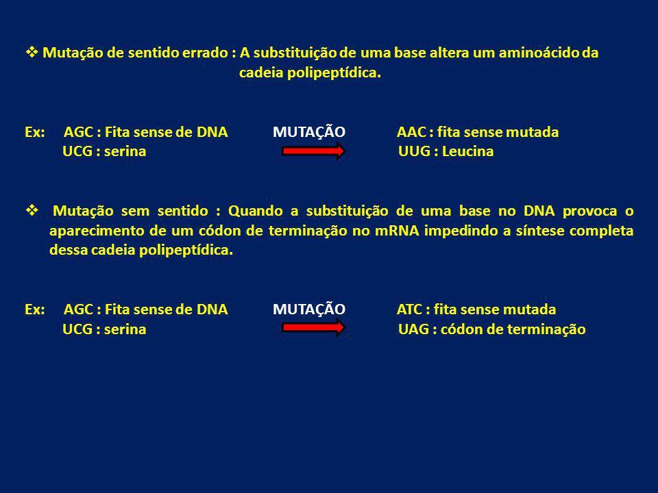 Mutação de sentido errado : A substituição de uma base altera um aminoácido da