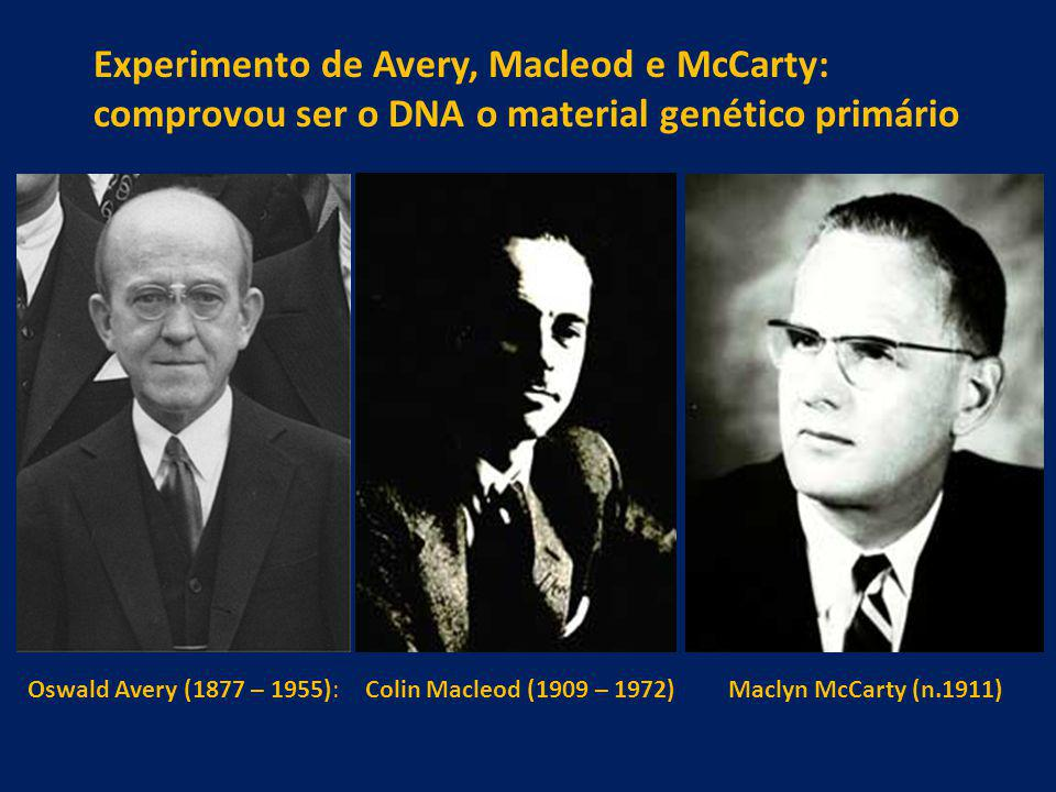 Experimento de Avery, Macleod e McCarty: