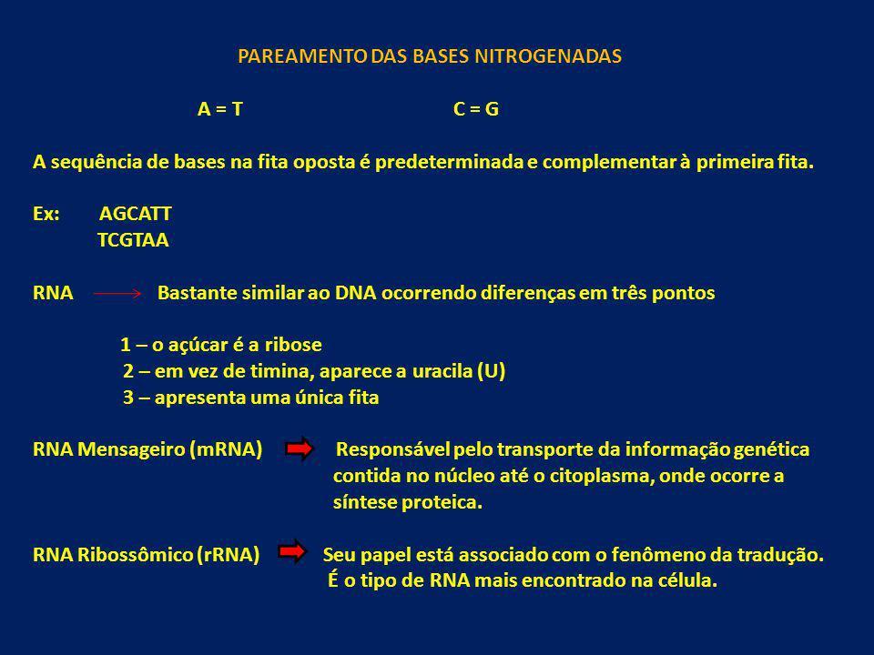 PAREAMENTO DAS BASES NITROGENADAS