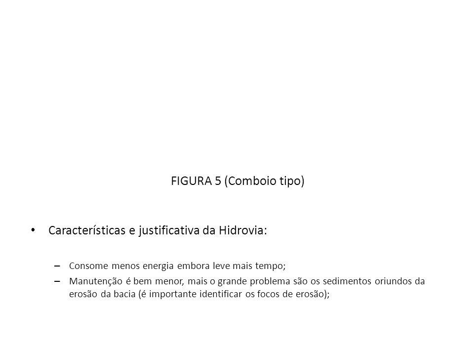 Características e justificativa da Hidrovia: