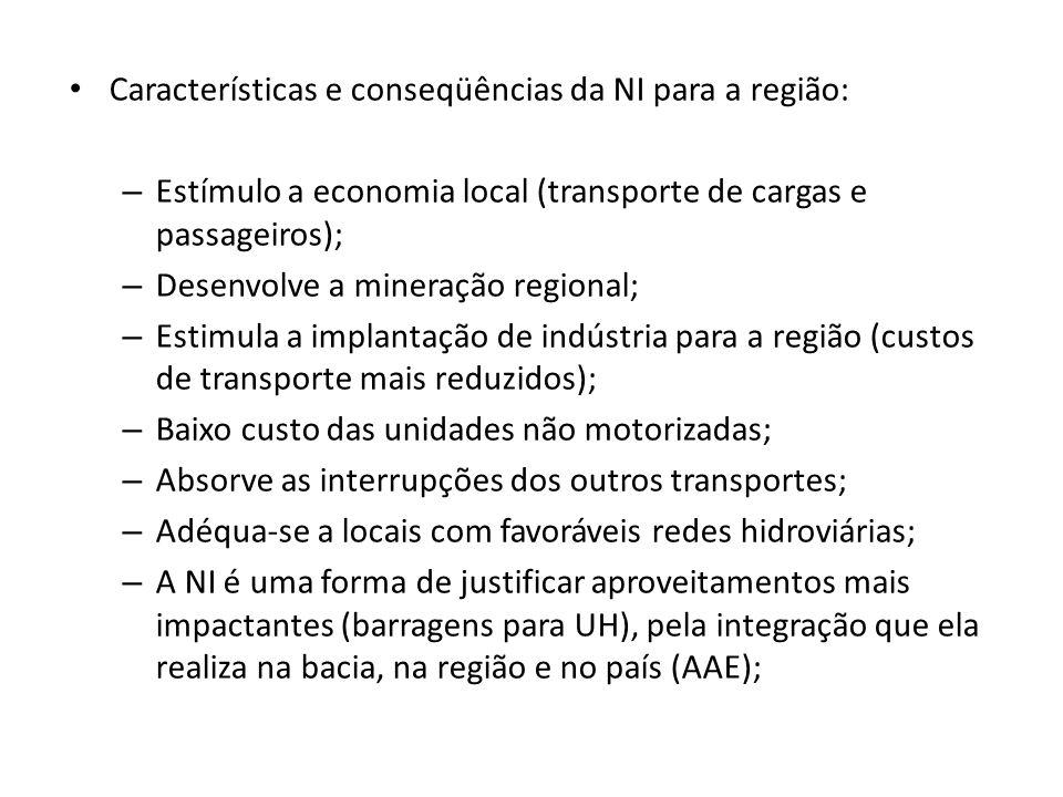 Características e conseqüências da NI para a região: