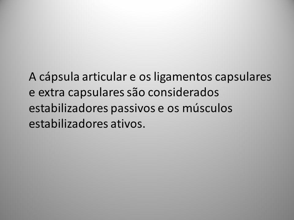 A cápsula articular e os ligamentos capsulares e extra capsulares são considerados estabilizadores passivos e os músculos estabilizadores ativos.