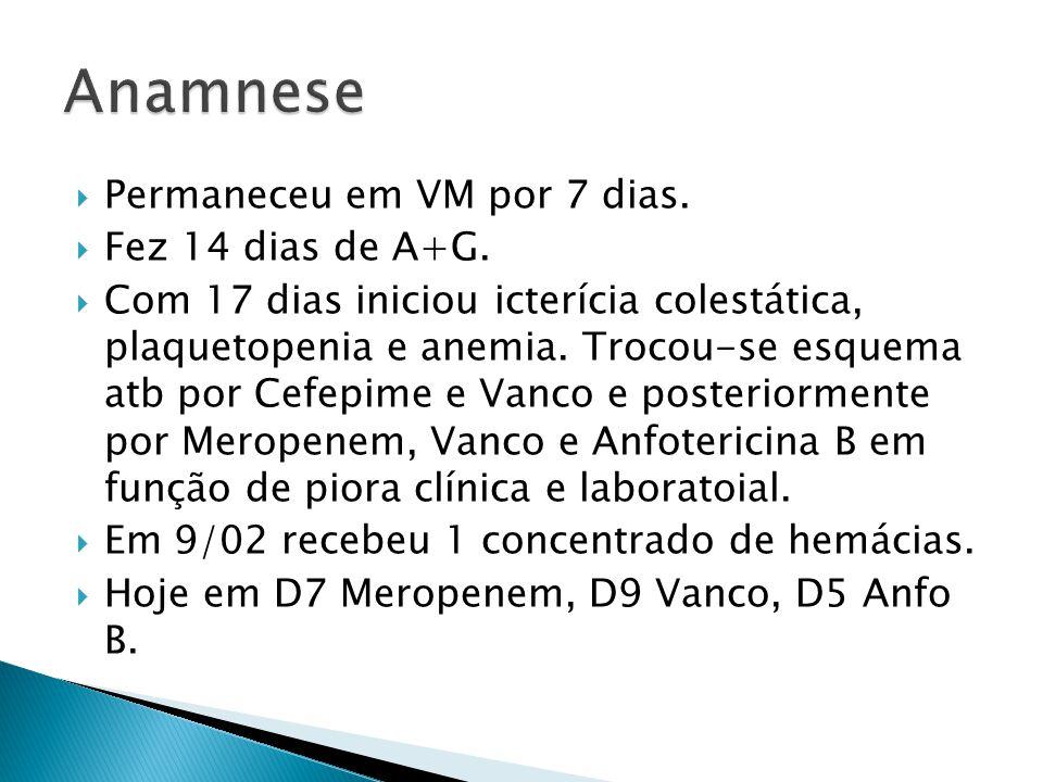 Anamnese Permaneceu em VM por 7 dias. Fez 14 dias de A+G.