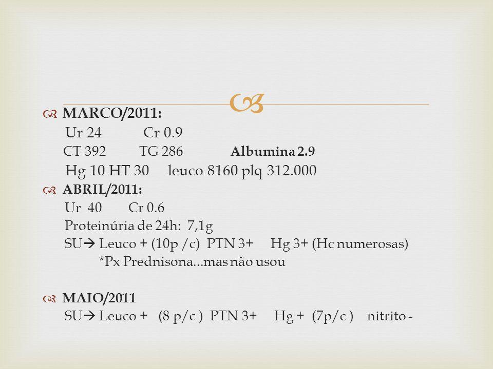 MARCO/2011: Ur 24 Cr 0.9 Hg 10 HT 30 leuco 8160 plq 312.000