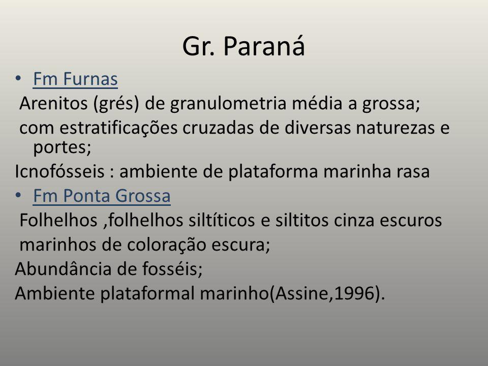 Gr. Paraná Fm Furnas Arenitos (grés) de granulometria média a grossa;