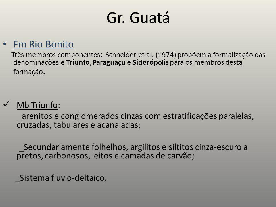 Gr. Guatá Fm Rio Bonito Mb Triunfo:
