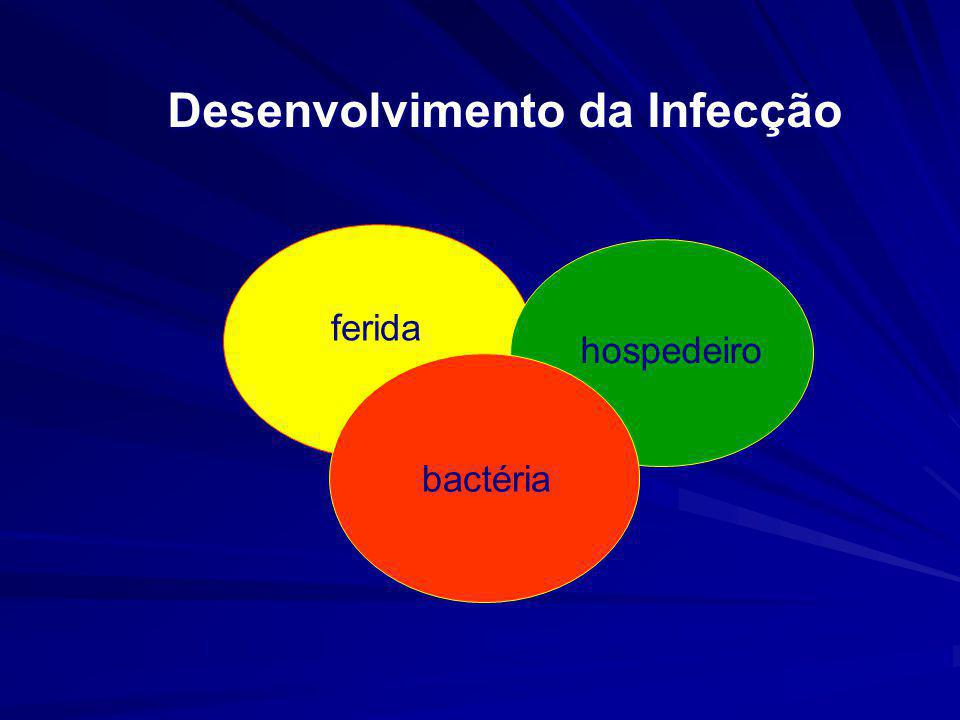 Desenvolvimento da Infecção