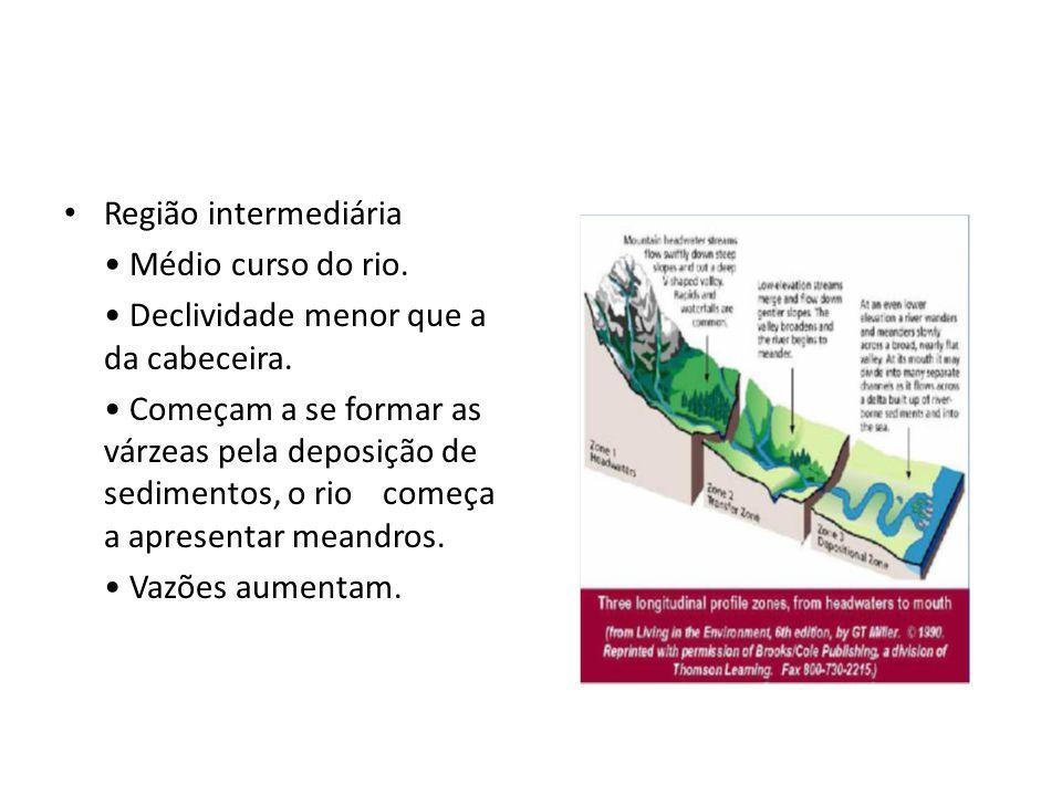 Região intermediária • Médio curso do rio. • Declividade menor que a da cabeceira.