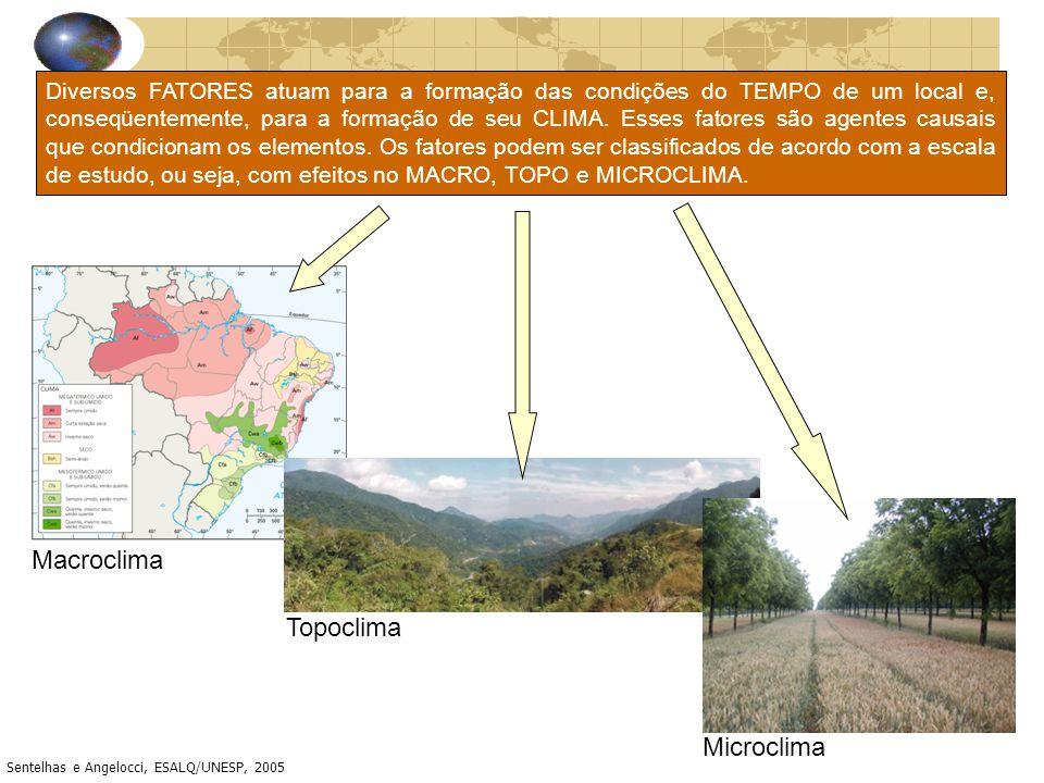 Macroclima Topoclima Microclima