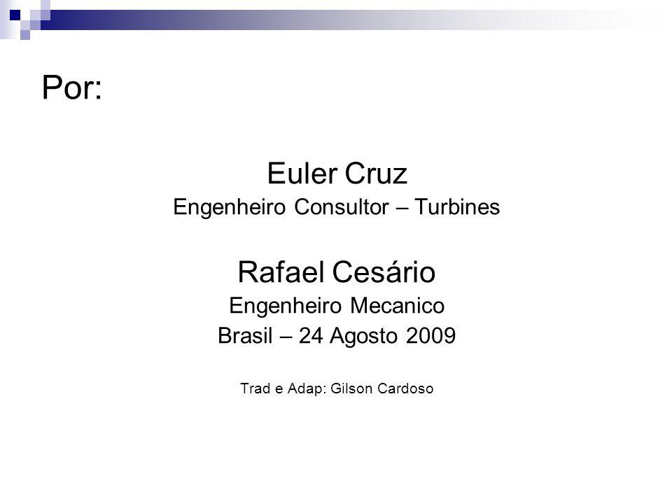 Por: Euler Cruz Rafael Cesário Engenheiro Consultor – Turbines