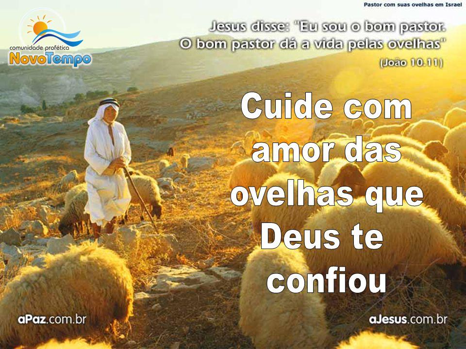 Cuide com amor das ovelhas que Deus te confiou