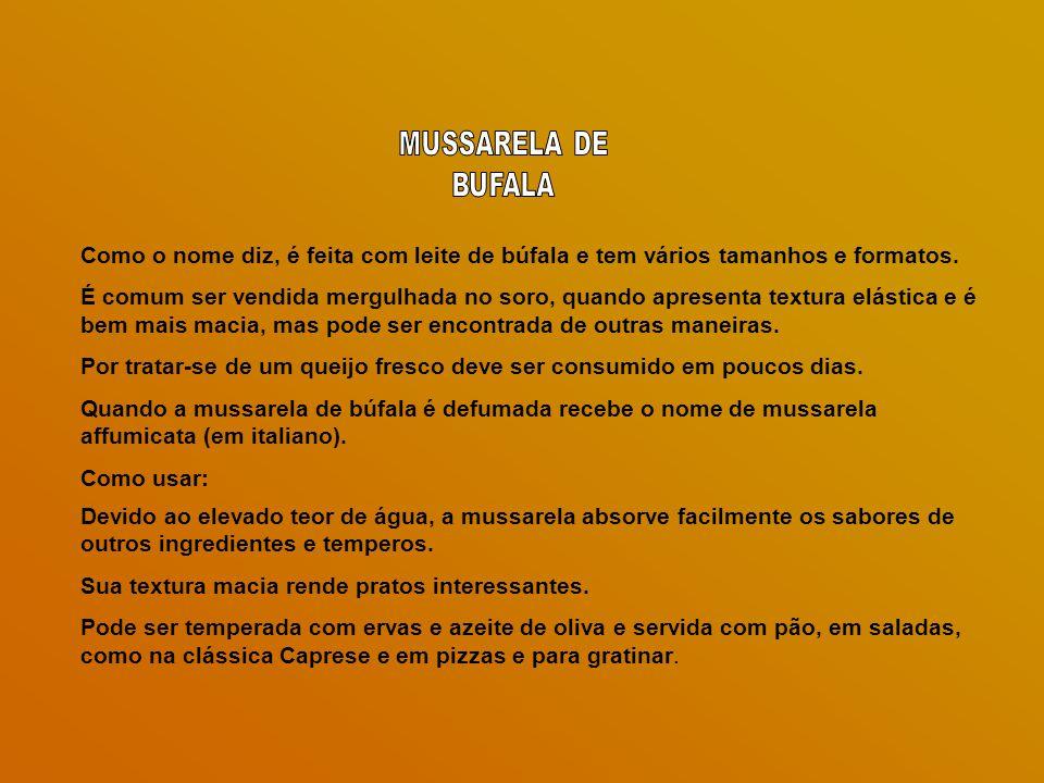 MUSSARELA DE BUFALA. Como o nome diz, é feita com leite de búfala e tem vários tamanhos e formatos.