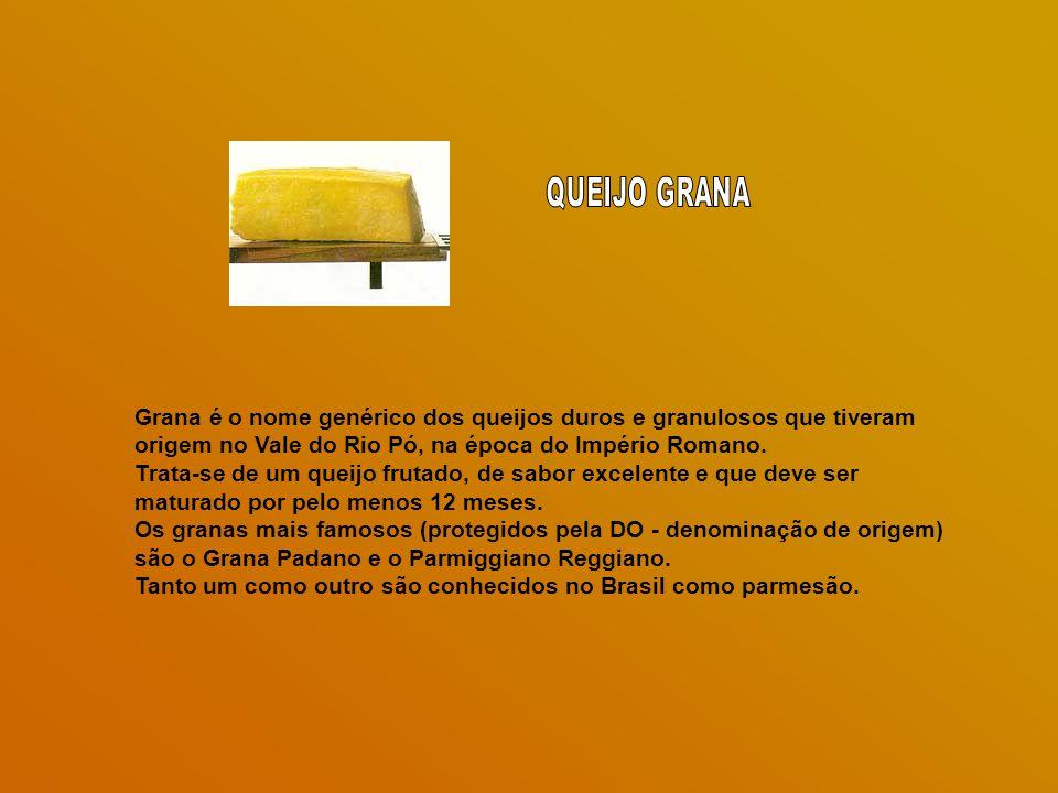QUEIJO GRANA Grana é o nome genérico dos queijos duros e granulosos que tiveram origem no Vale do Rio Pó, na época do Império Romano.