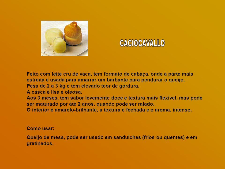 CACIOCAVALLO Feito com leite cru de vaca, tem formato de cabaça, onde a parte mais estreita é usada para amarrar um barbante para pendurar o queijo.