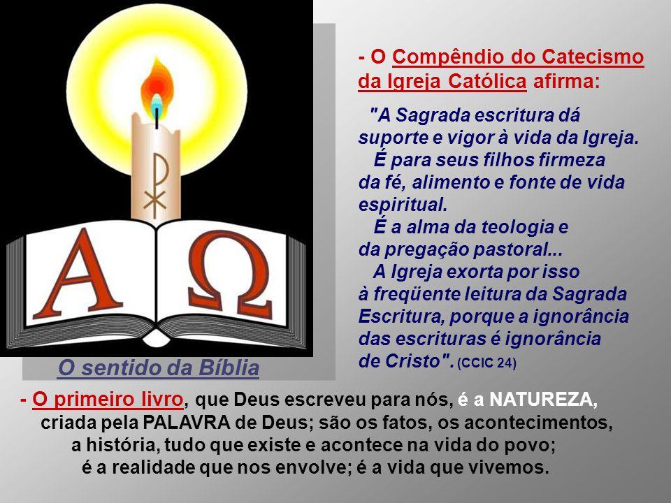 - O Compêndio do Catecismo da Igreja Católica afirma:
