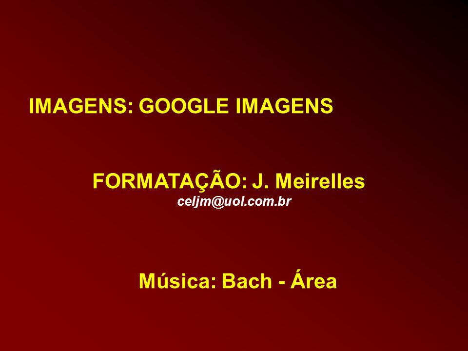 IMAGENS: GOOGLE IMAGENS
