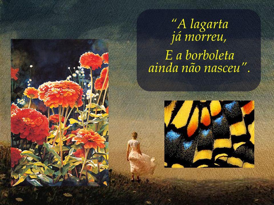 A lagarta já morreu, E a borboleta ainda não nasceu .