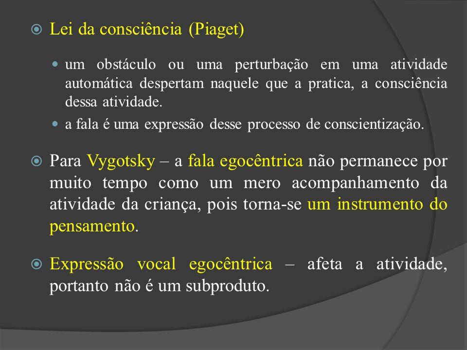Lei da consciência (Piaget)