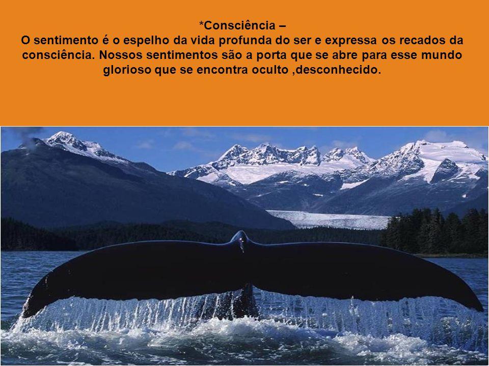 *Consciência –