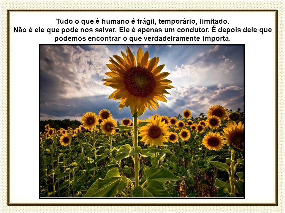 Tudo o que é humano é frágil, temporário, limitado.