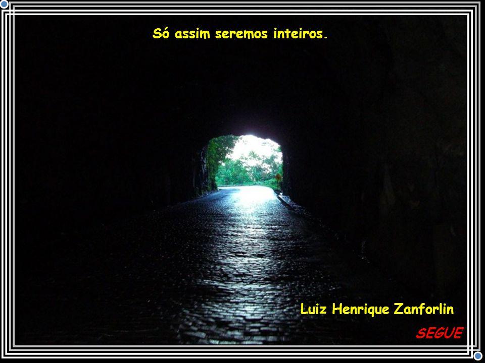 Só assim seremos inteiros. Luiz Henrique Zanforlin