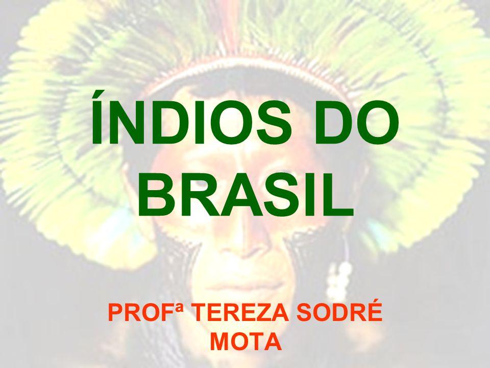 PROFª TEREZA SODRÉ MOTA