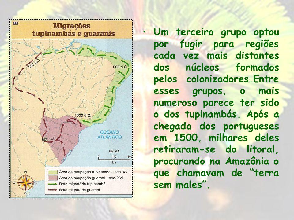Um terceiro grupo optou por fugir para regiões cada vez mais distantes dos núcleos formados pelos colonizadores.Entre esses grupos, o mais numeroso parece ter sido o dos tupinambás.