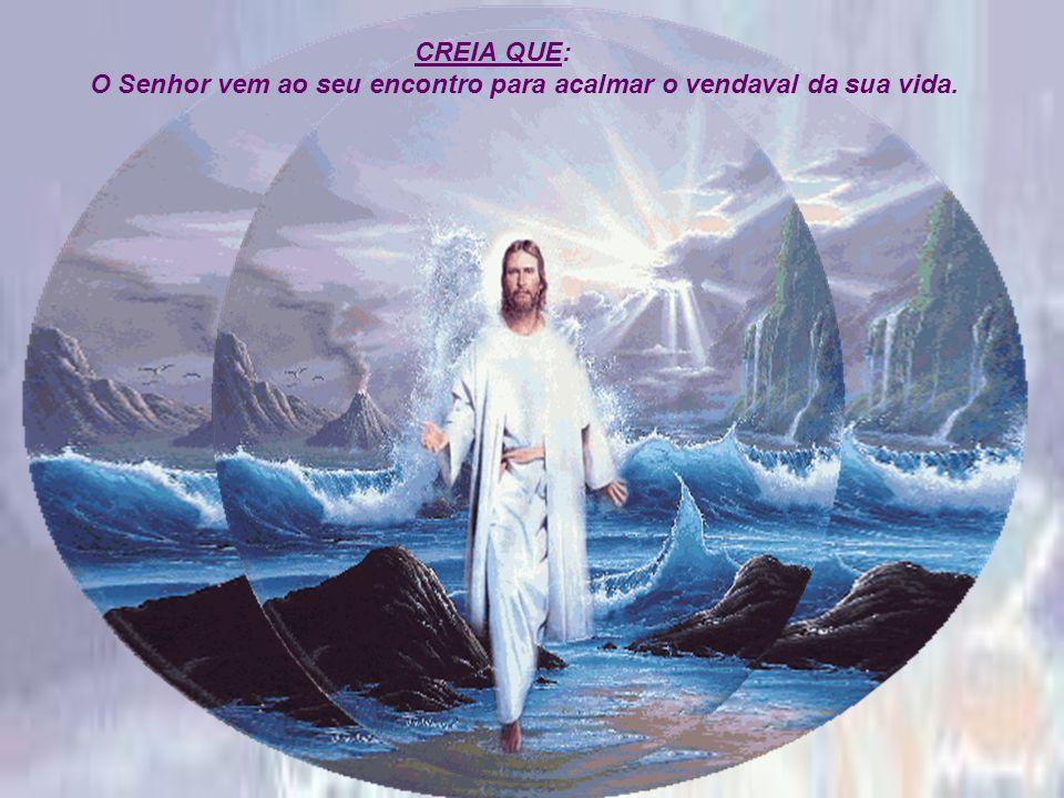 CREIA QUE: O Senhor vem ao seu encontro para acalmar o vendaval da sua vida.