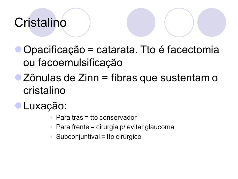 Cristalino Opacificação = catarata. Tto é facectomia ou facoemulsificação. Zônulas de Zinn = fibras que sustentam o cristalino.