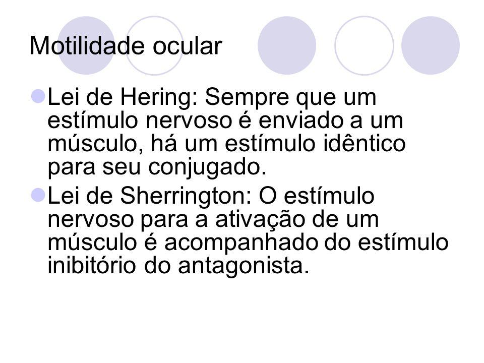 Motilidade ocular Lei de Hering: Sempre que um estímulo nervoso é enviado a um músculo, há um estímulo idêntico para seu conjugado.