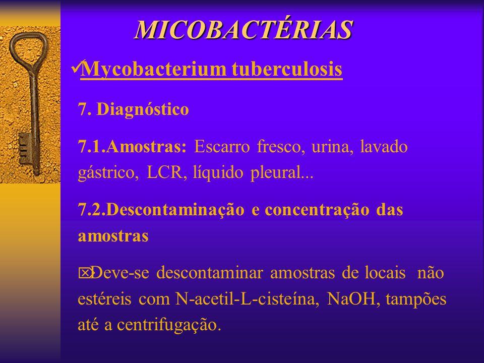 MICOBACTÉRIAS Mycobacterium tuberculosis 7. Diagnóstico