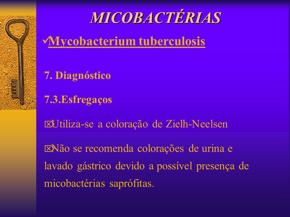 MICOBACTÉRIAS Mycobacterium tuberculosis 7. Diagnóstico 7.3.Esfregaços