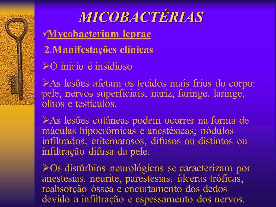 MICOBACTÉRIAS Mycobacterium leprae O início é insidioso