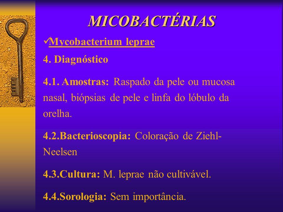 MICOBACTÉRIAS Mycobacterium leprae 4. Diagnóstico