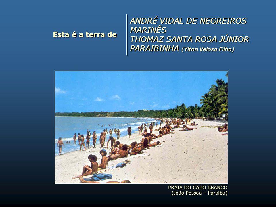ANDRÉ VIDAL DE NEGREIROS MARINÊS THOMAZ SANTA ROSA JÚNIOR