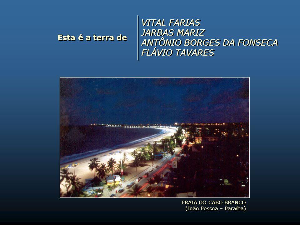 ANTÔNIO BORGES DA FONSECA FLÁVIO TAVARES