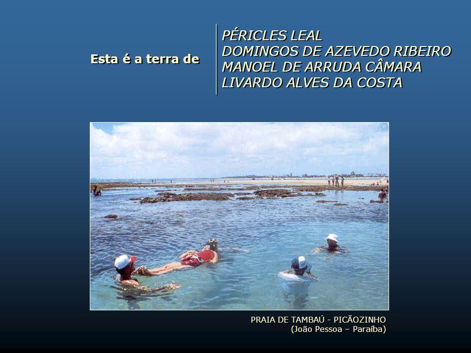 DOMINGOS DE AZEVEDO RIBEIRO MANOEL DE ARRUDA CÂMARA